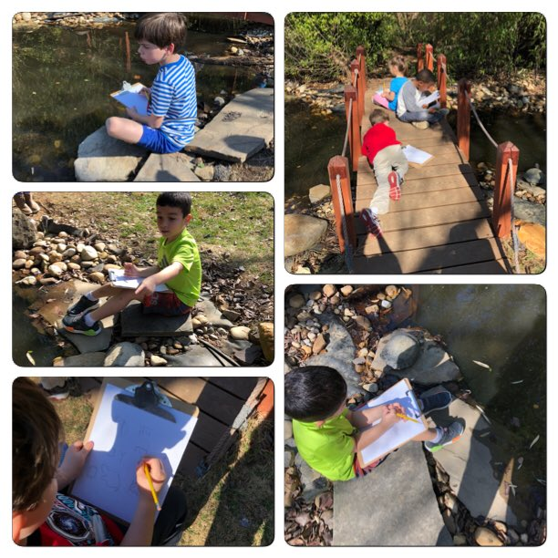 creating-observational-drawings-in-the-courtyard-even-the-turtles-decided-to-come-sit-with-us-campbellaps-https-t-co-ewjit3uezh