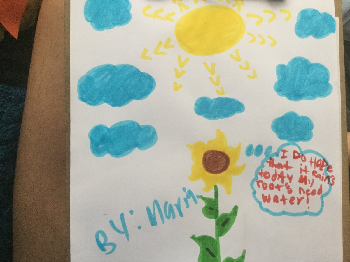 4th-grade-students-created-plant-cartoons-from-the-point-of-view-of-a-plant-https-t-co-rhnknbzf2j