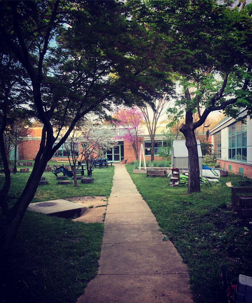 i-never-get-tired-of-this-view-of-our-schoolgarden-in-the-morning-campbellaps-https-t-co-d8vrqthlle