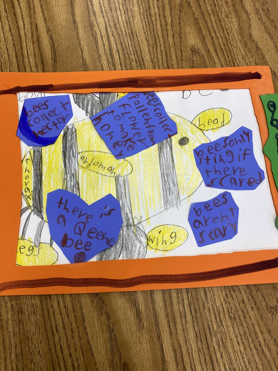 we-created-informational-posters-and-models-of-some-animals-we-have-learned-about-campbellaps-https-t-co-aqxavq3ehb